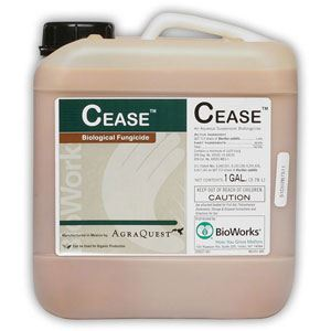 Picture of Cease Microbial Fungicide and Bactericide OMRI Listed